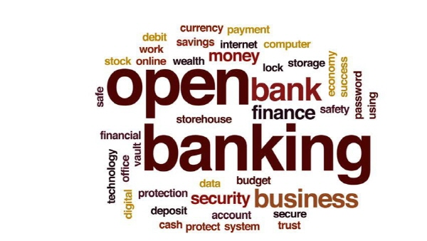 Open Banking Should Not Be Put into Action